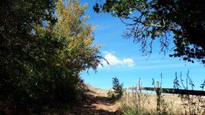 Zertifizierte Wanderwege direkt am Ortsrand